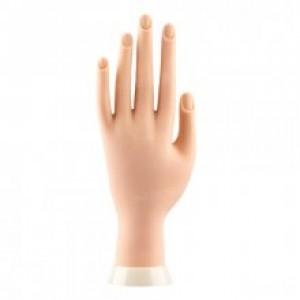 рука модель тренировочная